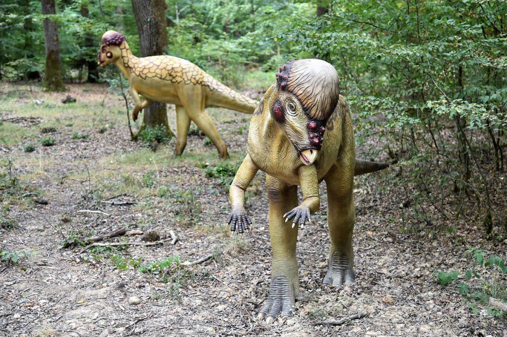 Dinosaurierpark Teufelsschlucht